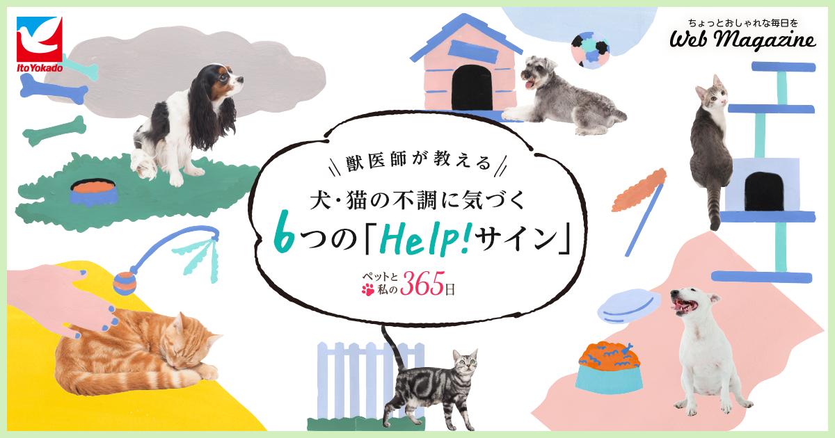 獣医師が教える犬・猫の不調に気づく6つの「Help!サイン」